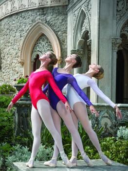 Balletrosa-bodynetz